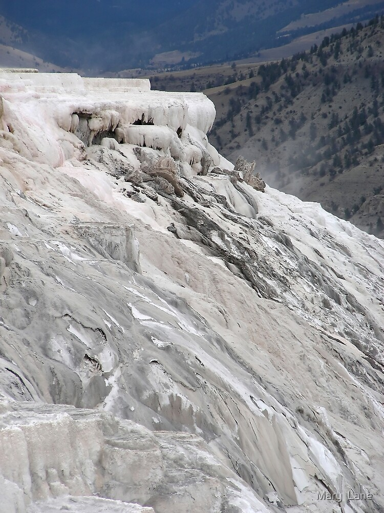 Mammoth Hot Springs by Mary  Lane