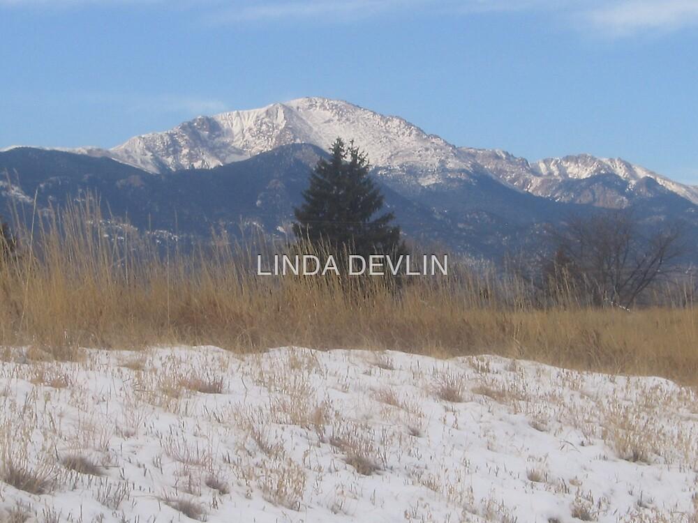 Pikes Peak in winter 03 by LINDA DEVLIN