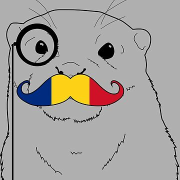 Mustache Flag Romania by otterglot