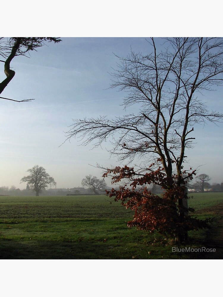 One Misty Morning in Essex von BlueMoonRose
