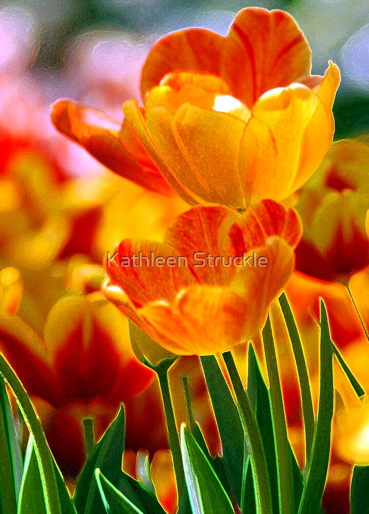 Spring Flowers by Kathleen Struckle