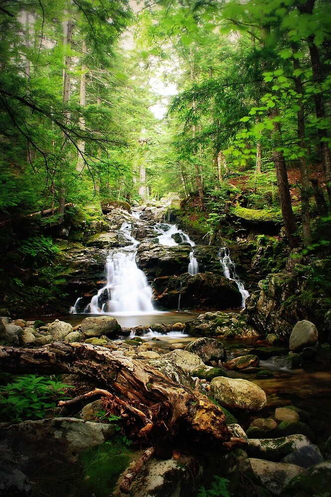 Gordon Fall, Appalachia, New Hampshire by buggsmoran