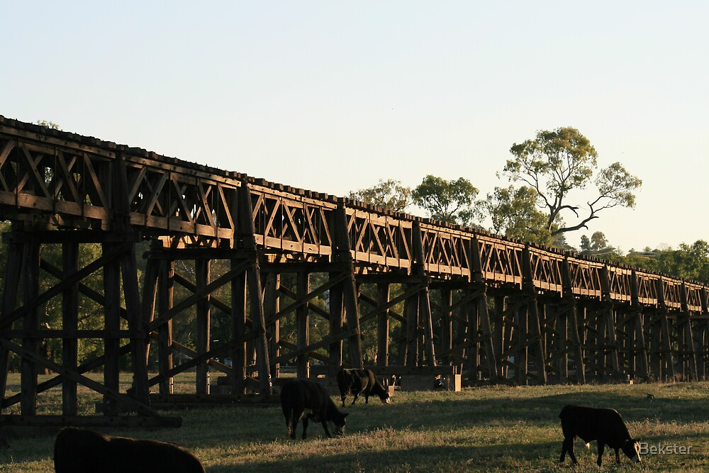 Historic rail bridge by Bekster