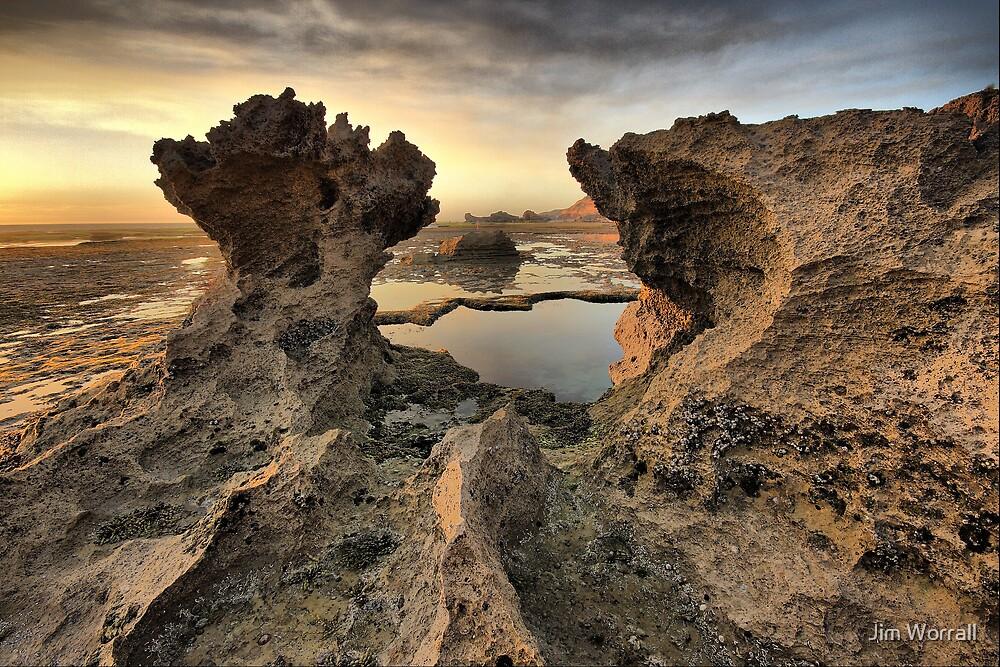 Tidal Pillar by Jim Worrall