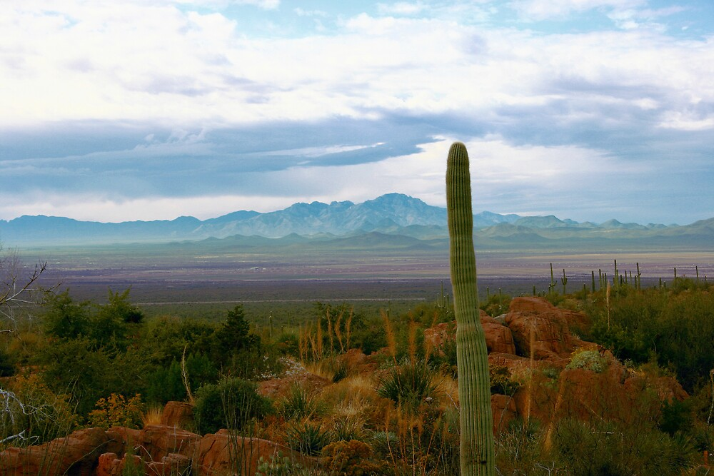 Sierritas Range, Tucson, Arizona by buggsmoran