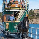 Horse Tram - Victor Harbour by DPalmer