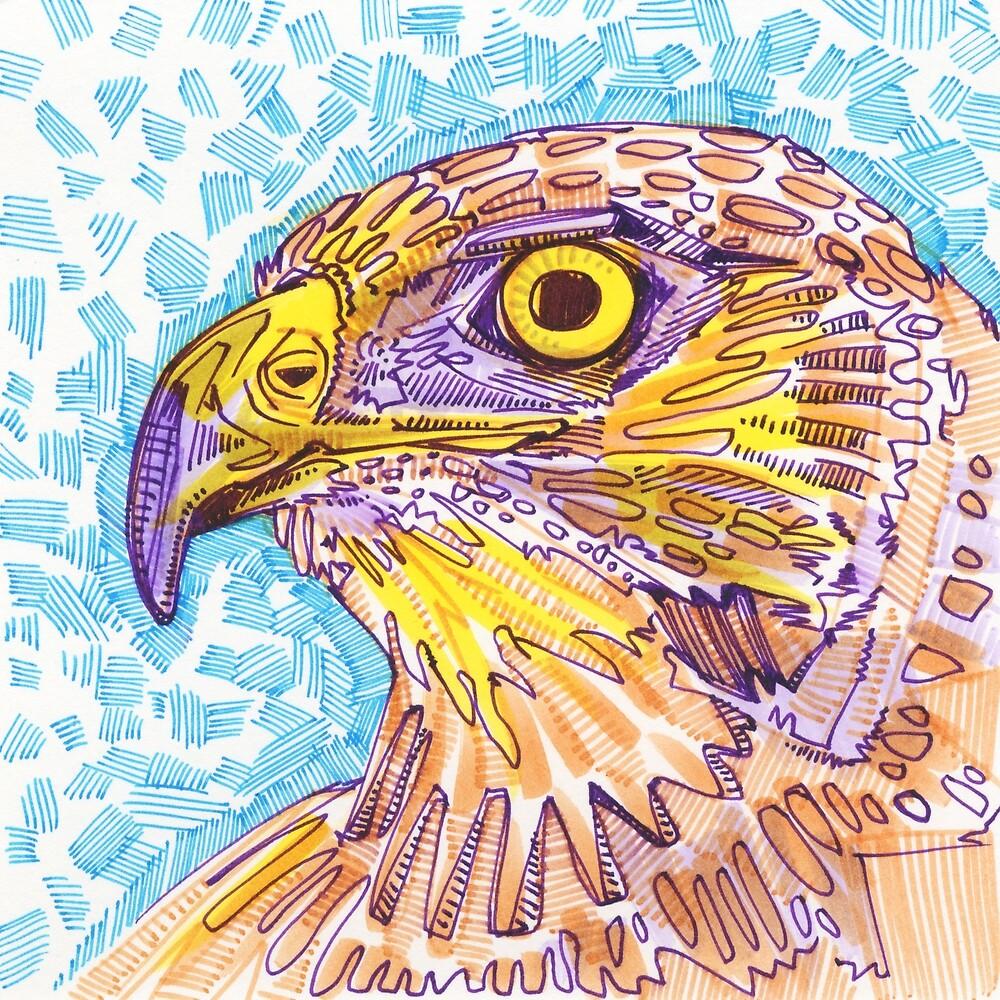 Hawk Drawing - 2017 by Gwenn Seemel