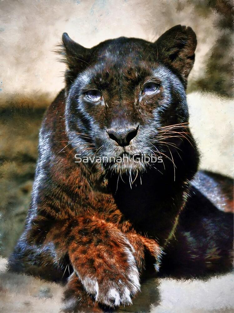 Black Leopard by Savannah Gibbs