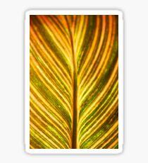 Color leaves background Sticker