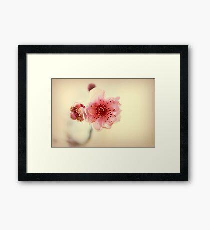 A Promise Of Spring Framed Print