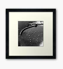 Jersey Harbour Framed Print