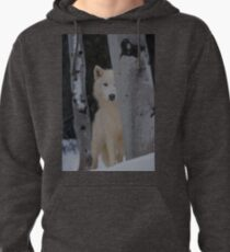Pearing Through  Pullover Hoodie