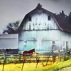 Barn of a Different Color by Nadya Johnson