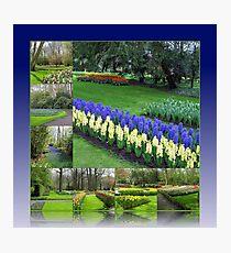 Keukenhof Hyacinths and Tulips Collage Photographic Print