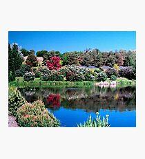 Univ. Of Idaho Arboretum and Botanical Gardens Photographic Print