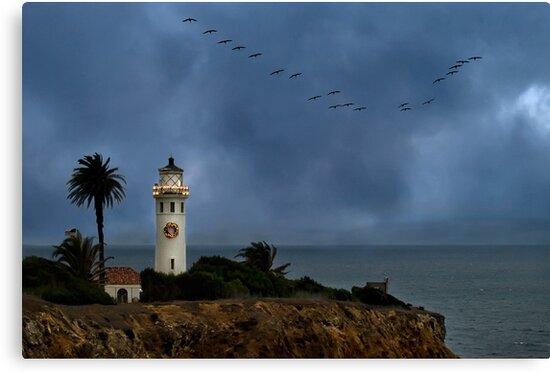 Storm brewing off Point Vicente by Celeste Mookherjee