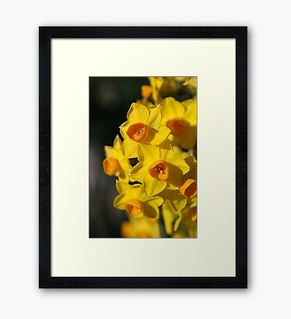 Dresses in Happy Yellow - Jonquils Framed Print