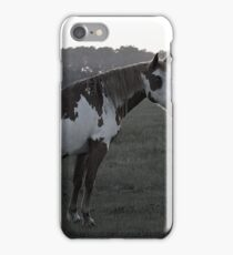 Ghostly Equine iPhone Case/Skin