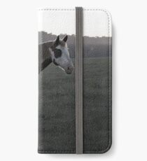 Ghostly Equine iPhone Wallet/Case/Skin