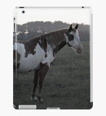 Ghostly Equine iPad Case/Skin