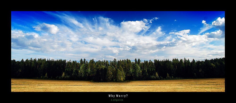 Why Worry? by Nerugla