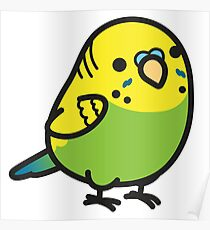 Chubby Green Budgie Poster