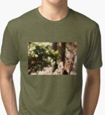 Deer Ears Tri-blend T-Shirt