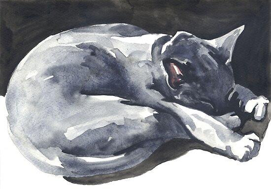 Cat Naps The Superhero Posters By Denise Faulkner