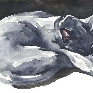 Cat Naps: The Superhero by desines