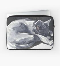 Cat Naps: The Superhero Laptop Sleeve