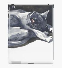 Cat Naps: The Superhero iPad Case/Skin