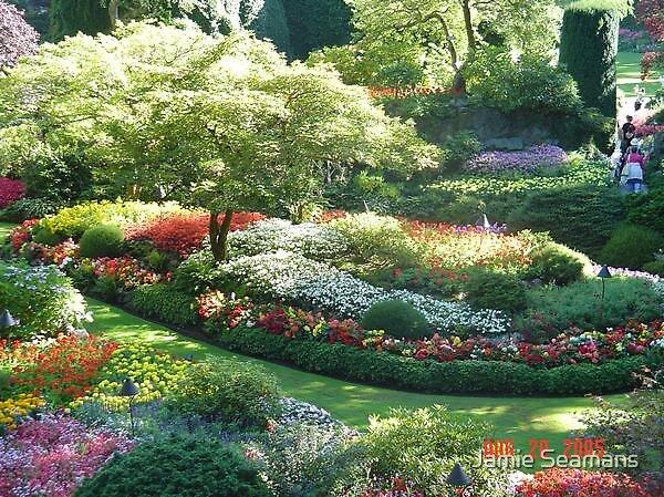 the gardens by Jamie Seamans