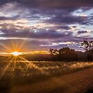 Elcombe Sunset 7 by Candice O'Neill