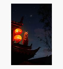 Shrine Fox Photographic Print