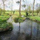 Leach River, Southrop, Wiltshire by lezvee