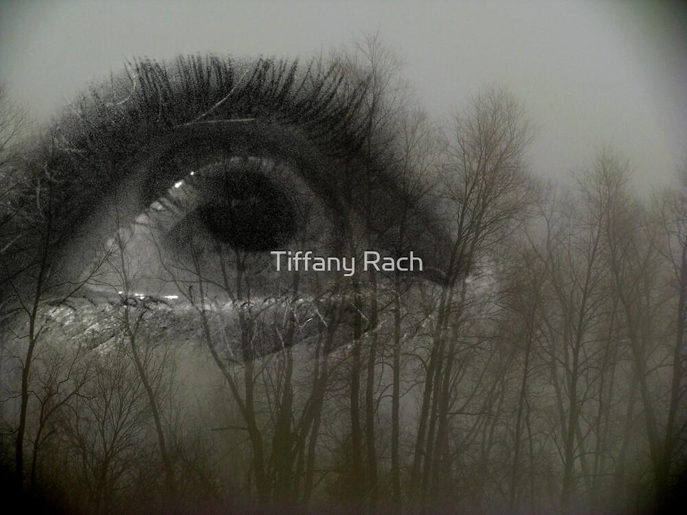 Eye of Wonder by Tiffany Rach