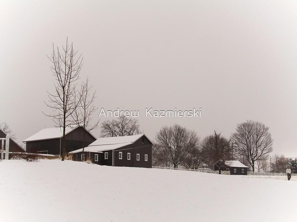 Winter Farm by andykazie