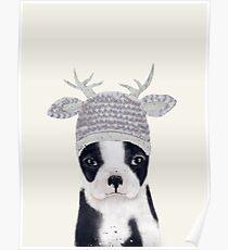 little boston ooh deer Poster