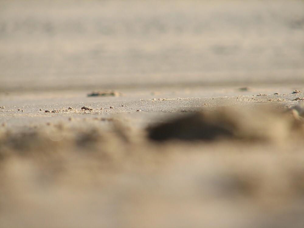Sand by Lauren Carr