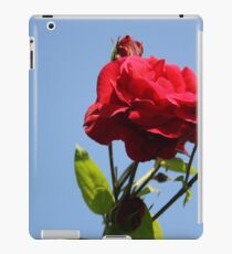 Red Roses with Blue Sky Background iPad Case/Skin