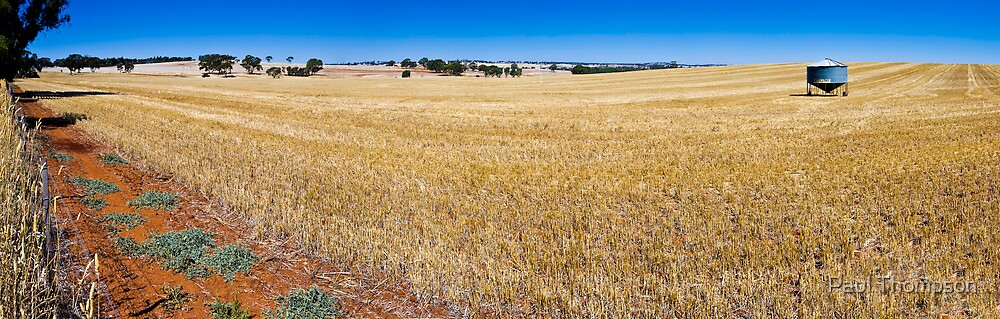 Dry Field Panorama by Paul Thompson