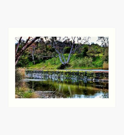 """Reflections Along  The Way"" Art Print"