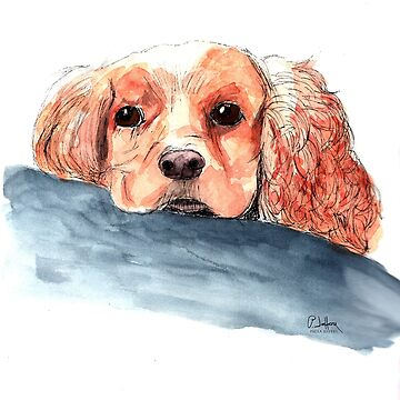 Cocker Spaniel by pjscribble