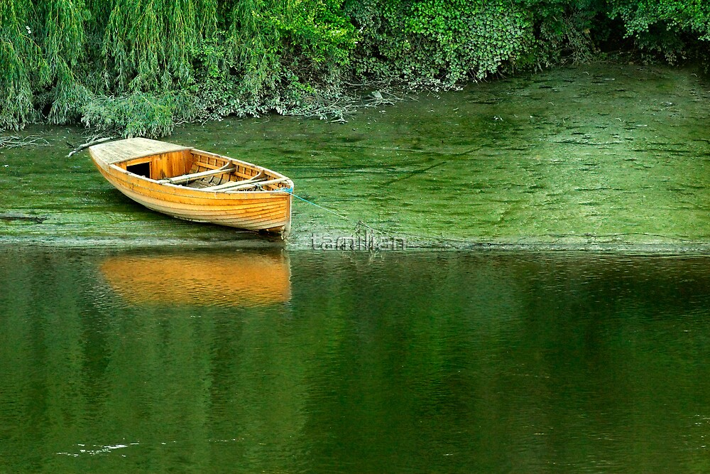 Lonely Boat by tamilian