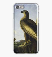 John James Audubon - Washington Sea Eagle iPhone Case/Skin