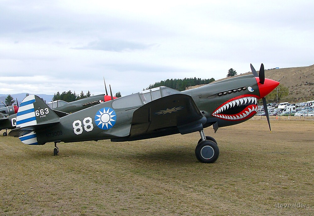 Curtiss P-40 Kittyhawk by stevealder