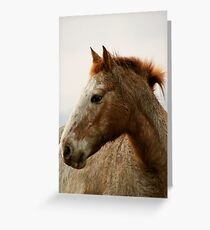 Strong spirit Greeting Card
