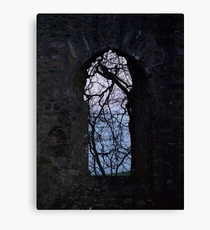 Ruins of Killeavy Church - Northern Ireland  Canvas Print