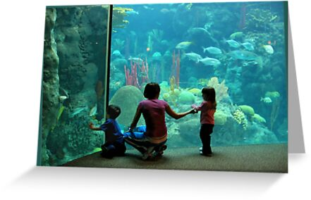 At the Aquarium by Ginny Schmidt