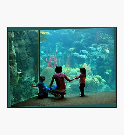 At the Aquarium Photographic Print